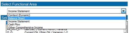 Selecting Balance Sheet as Functional Area