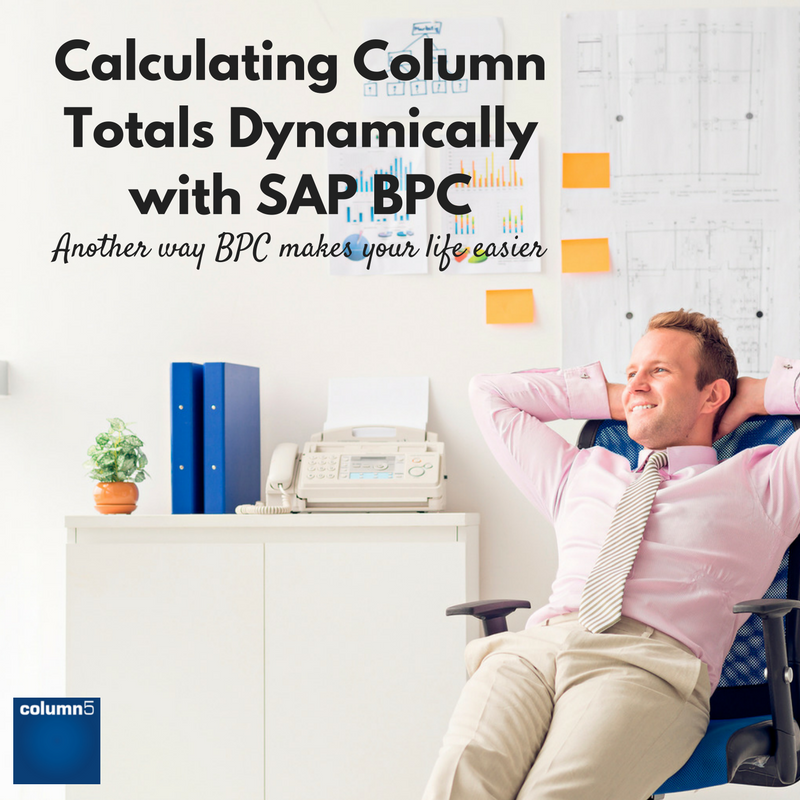 Calculating_Column_Totals_Dynamically_with_SAP_BPC.png