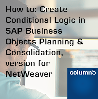 How to: Create Conditional Logic in SAP BPC, version for NetWeaver