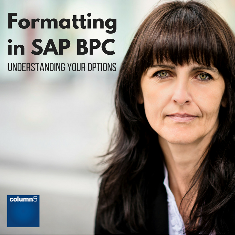 Formatting_in_SAP_BPC.png