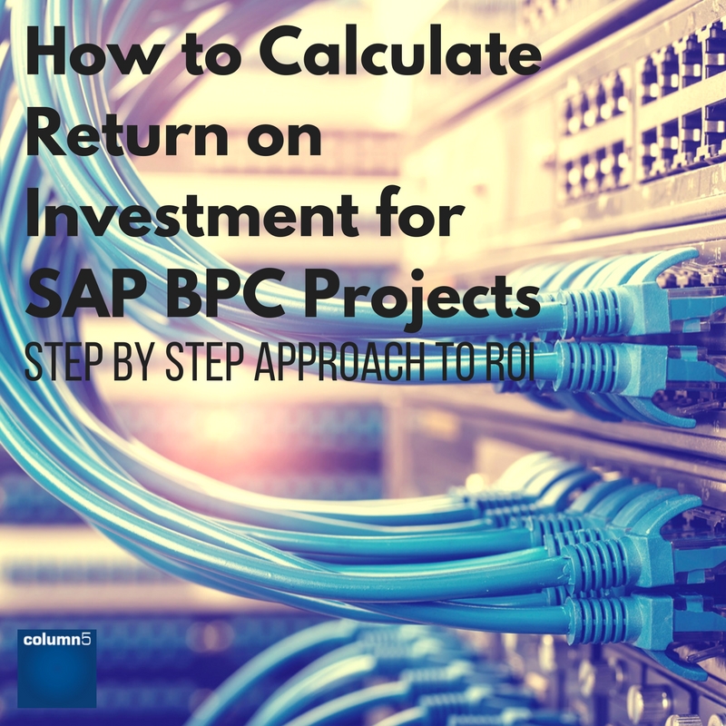 How_to_Calculate_Return_on_Investment_for_SAP_BPC_Projects.png