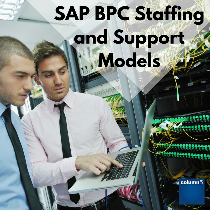 SAP_BPC_Staffing_and_Support_Models.png