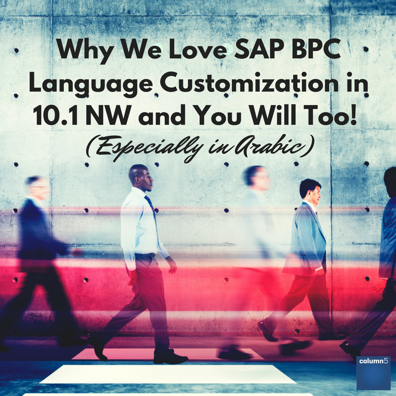 Why We Love SAP BPC Language Customisation in 10.1 NW and You Will Too! (Especially in Arabic)